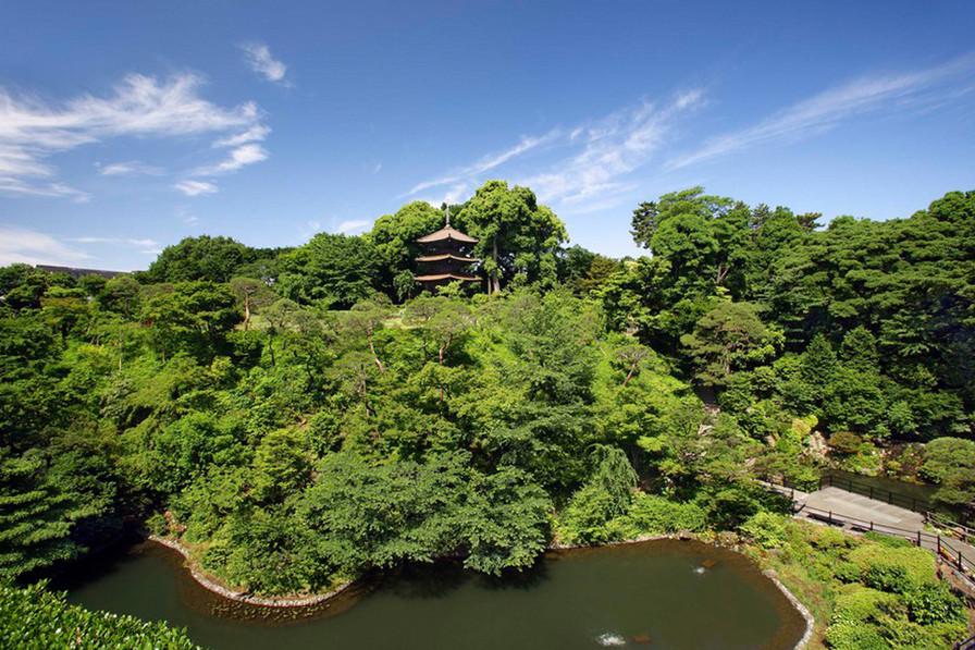 椿山荘の森